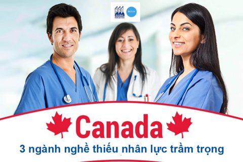 3 ngành nghề tại Canada đang thiếu hụt nhân lực trầm trọng