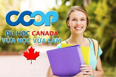 Vừa học vừa làm khi đi du học Canada
