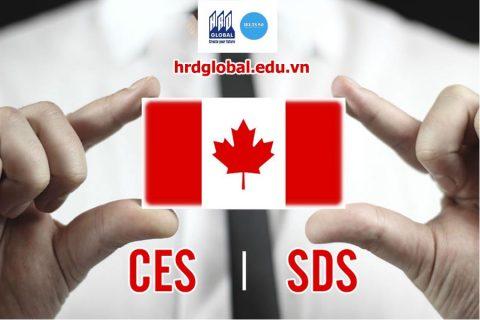 Du học Canada 2018 theo diện SDS có khác CES không?