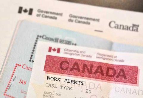 Giấy phép lao động tại Canada